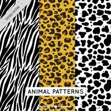 Zebra Patterns Fascinating Zebra Pattern Vectors Photos And PSD Files Free Download