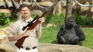 zookeeper pictures.  Pictures Zookeeper U201cBefore The Internet Zoos Just Quietly Shot Gorillas That  Stole Our Kids All The  And Zookeeper Pictures