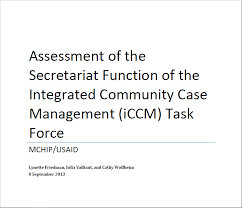 Task Force Secretariat Assessment Mchip Usaid 2013