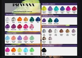 Pravana Color Swatch Chart Pravana Chromasilk Hair Color Chart Lajoshrich Com