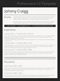 Best Professional Resume Template 86 Images Professional Resume