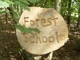 Image result for forest school