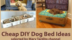 dog bed ideas. Exellent Dog Throughout Dog Bed Ideas G