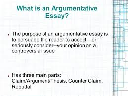 immigration argument essay argumentative strong verbs for reform  the argumentative essay ppt video online pro immigration persuasive whatisanargumentative immigration persuasive essay essay medium