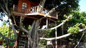 Thai Architecture Contemporary And Traditional Tree Houses In Treehouse Koh Phangan