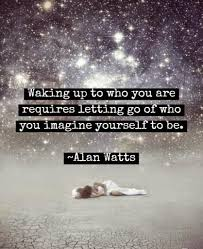 Insightful Quotes Beauteous Enlightenment 48 Beautifully Insightful Alan Watts Quotes