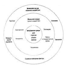 Внешняя среда организации её особенности и влияние Курсовая  Структура внешней среды и её особенности