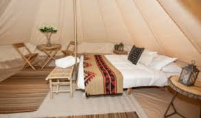 wise owl camp one queen bed package