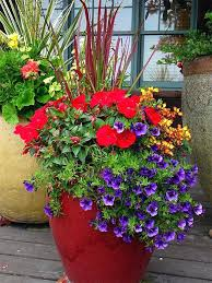 patio planter ideas find many fresh planting ideas for your containers in our spring patio pot