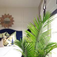 Palm Tree Decor For Bedroom Decorating With Palm Fronds