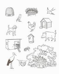 Free Animal Worksheets For Preschoolers Leversetdujour.info