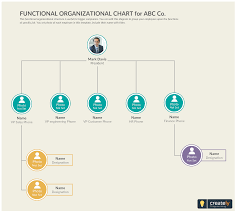 Organizational Chart Template The Functional Structure Organizational Chart Templates
