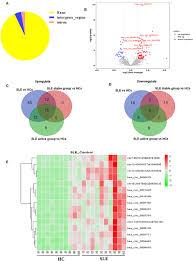 Health Pei Organizational Chart Frontiers Hsa_circ_0000479 As A Novel Diagnostic Biomarker
