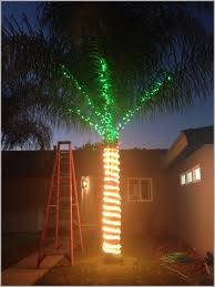 outside lighting ideas. Lighting:Tree Lighting Ideas Outdoor Christmas Indoor Landscape Palm Outside Light Storage Ceremony Decoration Showcase