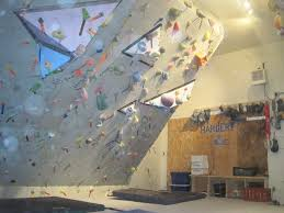 Small Picture What Every Home Climbing Wall Builder Ought To Know An Interview