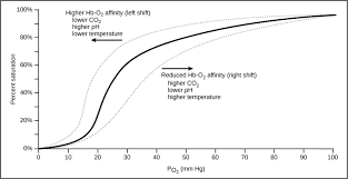 O2 Saturation Chart Transport Of Oxygen In The Blood Biology For Majors Ii