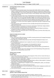 Leadership Resume Examples Operations Leader Resume Samples Velvet Jobs 13