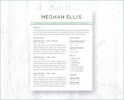 Resume Word Template Luxury Microsoft Word Resume Template Free