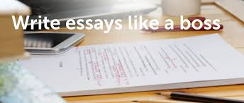 emerald write essays like a boss top tips on essays literature reviews and generally writing like a pro