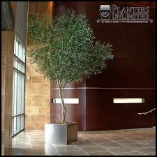Artificial indoor trees add a touch of green to interior spaces where live  trees would be impractical or impossible to grow, such as areas with little  or no ...