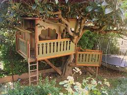 Unique Tree House Designs And Plans 1 Treehouse Mahal Impressive Design
