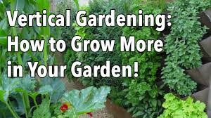 Vertical Kitchen Garden Vertical Gardening Simple Ideas For A Vertical Vegetable Garden