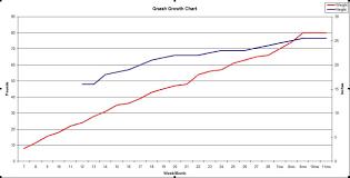 My Pups Growth Chart Germanshepherdhome Net