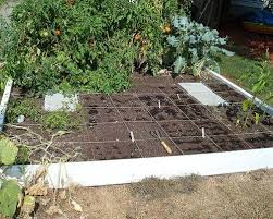 5 Tips For A Bountiful WaterSaving Vegetable Garden In A Time Of Fall Garden Crops