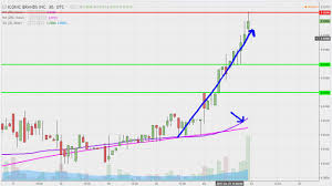 Iconic Brands Inc Icnb Stock Chart Technical Analysis For 01 23 17