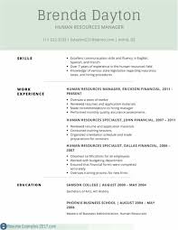 resumes layouts resume template free word luxury word resume layouts myacereporter