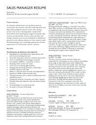 Objective For Project Manager Resume Staffing Recruiter Resume Entry