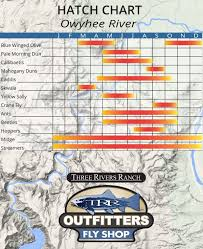 Owyhee River Hatch Chart Trr Outfitters