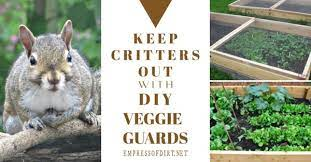 keep critters out of veggie beds with