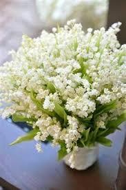 Composizioni di fiori bianchi centrotavola floreali arredamento fioraio decorazioni floreali composizioni floreali semplici centrotavola petali di rosa centrotavola di nozze blu disposizioni floreali moderne. Pin Su Foto