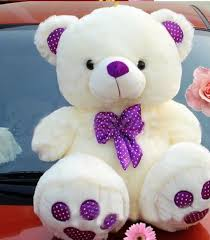 most beautiful pics for teddy bear day
