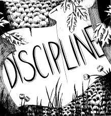 elizabeth pulie lota cover work discipline 3 2005 20x20cm ink on paper
