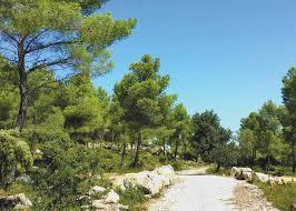 Grans, un écrin de verdure. Randonnées & balades au cœur de la Provence - PDF Téléchargement Gratuit