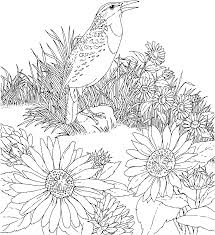 Small Picture flower Page Printable Coloring Sheets Coloring Flower Flowers