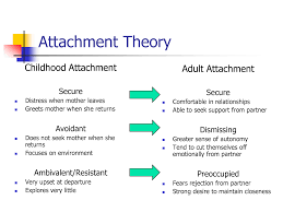 Attachment Patterns Unique Education About Everything 48