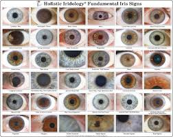 Iridology Chart Iris Eye Colors Chart Iridology Chart