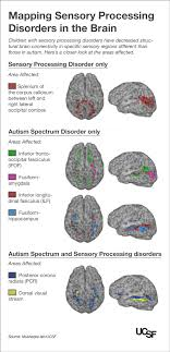 research paper on communication disorders Pinterest