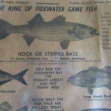 Details About Old Vintage Conservation Chart Of Fishing In Chesapeake Bay And Tidewater Rivers