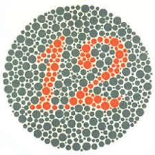 Mobilefish Com Online Ishihara Test For Color Blindness