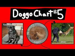 Doggo Chart Part 5 Hozzby Blog