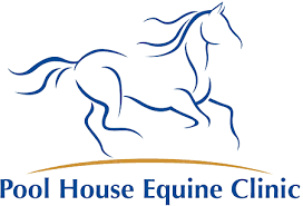 Equine Herpes Virus – Neurological Form | Pool House Vets