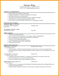 Good Summary For Resume Custom Good Summary For Resume Whats A What Should My Professional Look