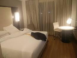 marriott housekeeping my room well organised clealiness housekeeping at top level
