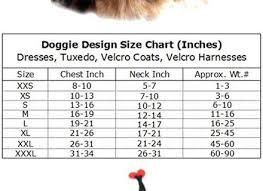 Lady Bug Dog Costume Korrectkritterscom