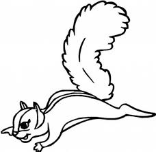 Flying Squirrel Coloring Page Download Print Online Coloring