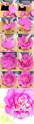 Peony Paper Flower Giant Peony Paper Flower Tutorial Paper Flower Patterns